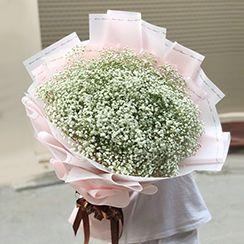 Bó hoa bibi