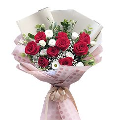 Boa hoa hồng đỏ HB580