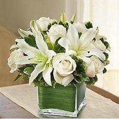 Hoa định kỳ, hoa để bàn ĐK78