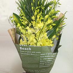 Bó hoa giá rẻ tặng đại biểu