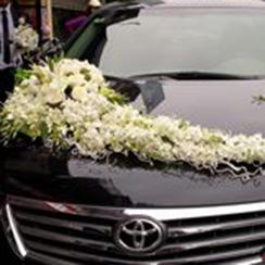 Xe hoa cưới 11