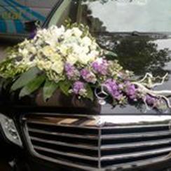 Xe hoa cưới 15
