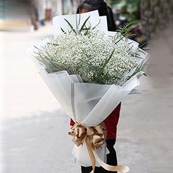 bó hoa baby HB254