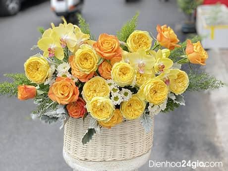 hoa hồng juliet HB595