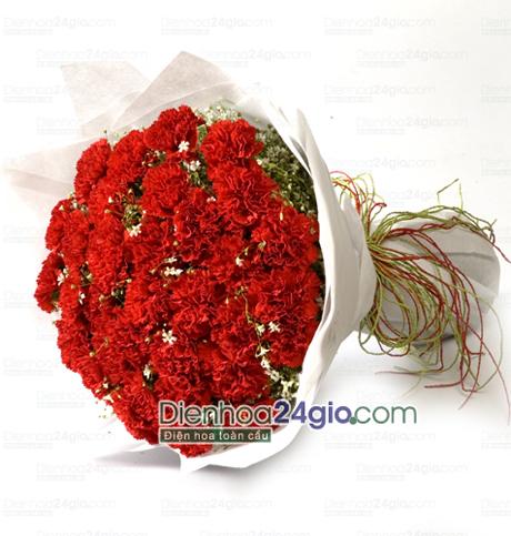 Bó hoa cẩm chướng đỏ HB276