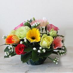 Hoa bàn họp 10
