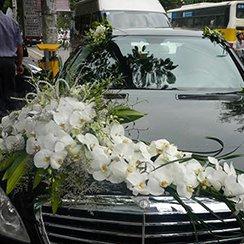 Xe hoa cưới XH32