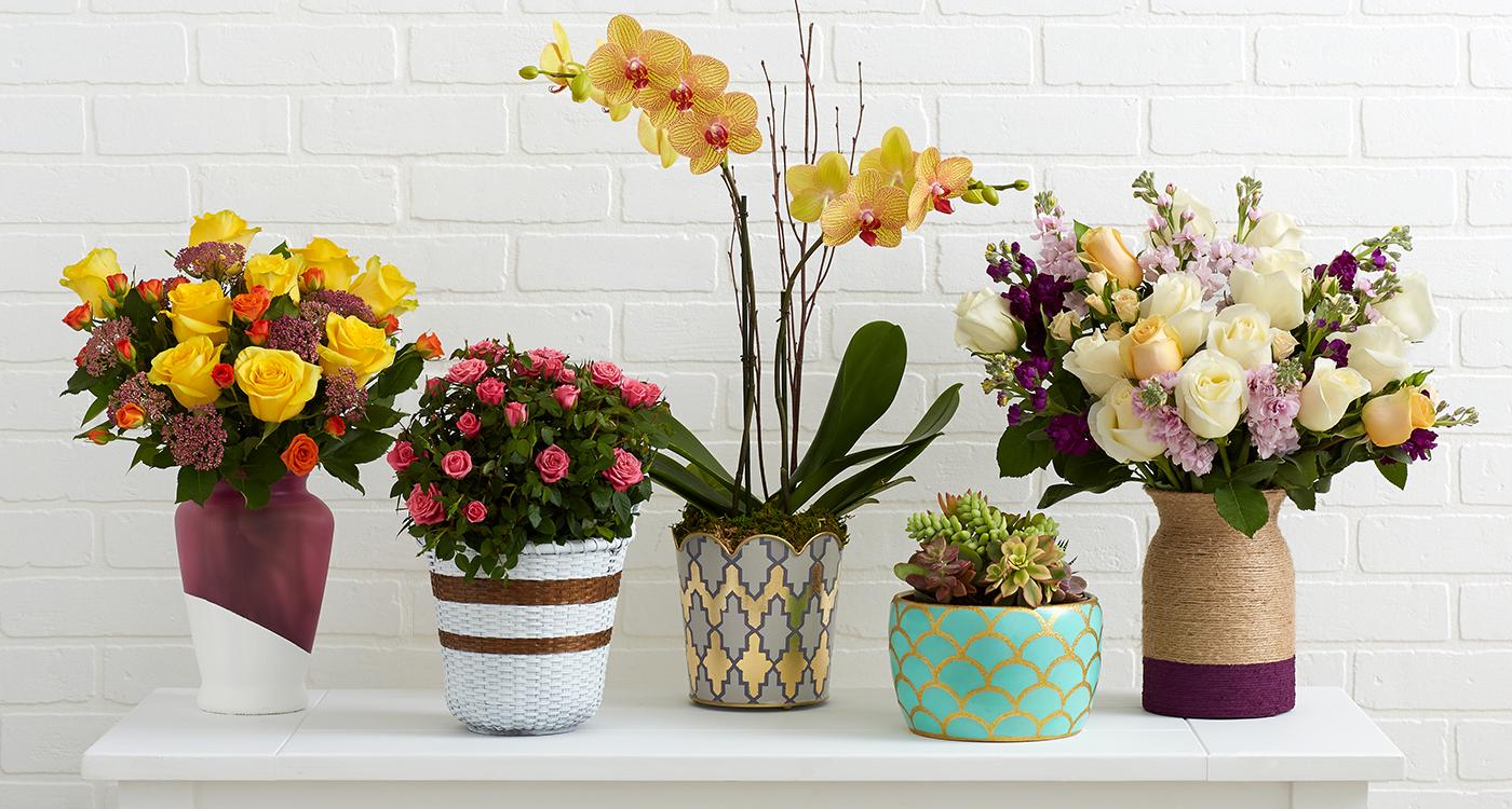 Điện Hoa 24h & Những lựa chọn hoa tươi tốt nhất tại Knoxville - Điện hoa 24h