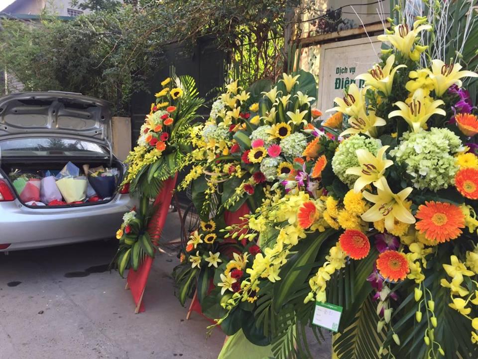 Hoa Khai Truong: Đặt Mua Hoa Khai Trương Rẻ đẹp ở Nha Trang